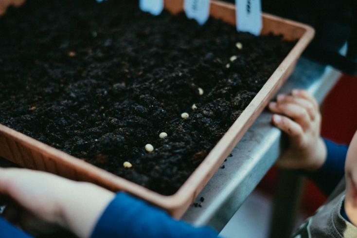 grow4